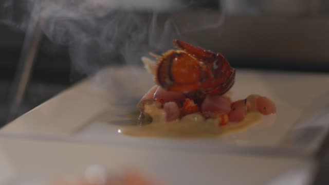 vídeos de stock e filmes b-roll de gourmet chef places steaming lobster on bed of scallops in restaurant kitchen - gastrónomo