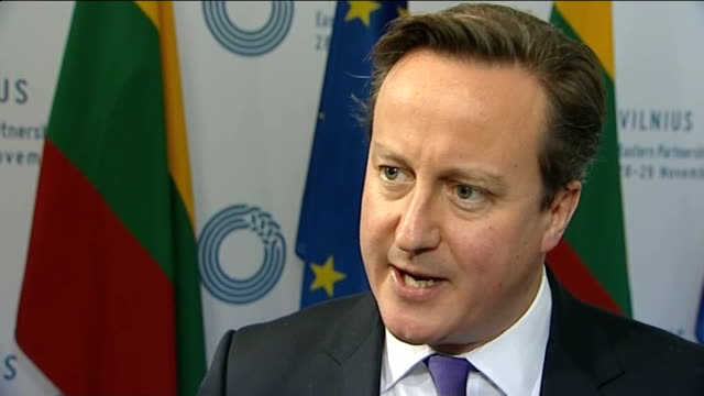Government denies asking energy companies to fix prices LITHUANIA Vilnius INT David Cameron MP interview SOT Want to get sustainably low energy...