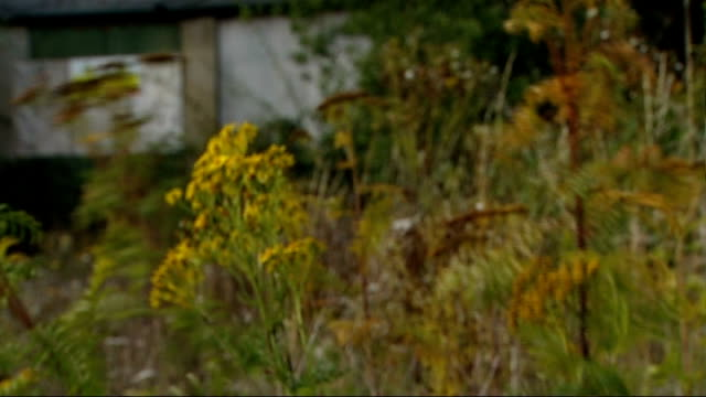 vídeos de stock e filmes b-roll de government planning law reforms attacked by national trust various views of derelict farm buildings reporter along with andrew whitaker and interview... - national trust