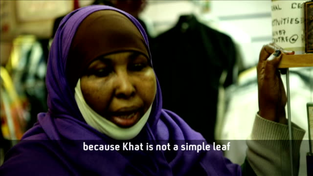 government to make recommendations about use of drug khat; *uk rights only, no international use* kenya: ext men climbing tree and picking khat man... - horn of africa stock videos & royalty-free footage