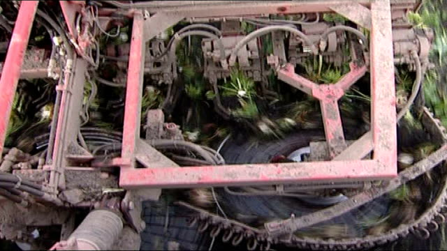 government told to do more to promote bioenergy general view of crops in field close up of machine breaking up crops tractor along through field as... - root vegetable stock videos and b-roll footage