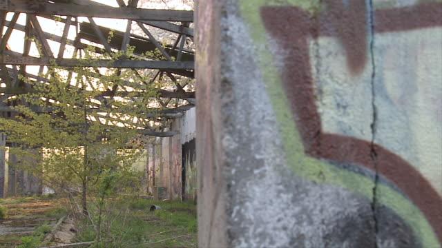 MS POV Graffiti on abandoned building / Brandenburg, Germany