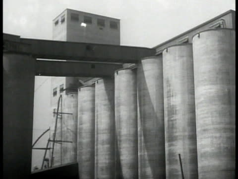 grain elevators ws field of stacked cotton bales ws grain chute loading barge ha grain pouring into barge wheat farming farm goods agriculture - granary stock videos & royalty-free footage