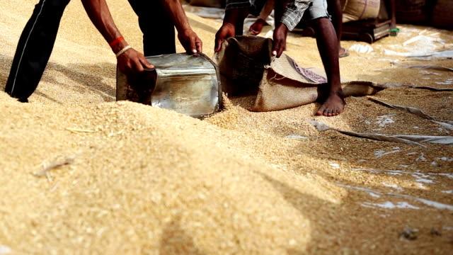 grain market - sack stock videos & royalty-free footage