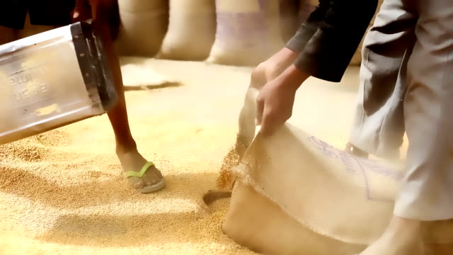 grain market - unloading stock videos & royalty-free footage