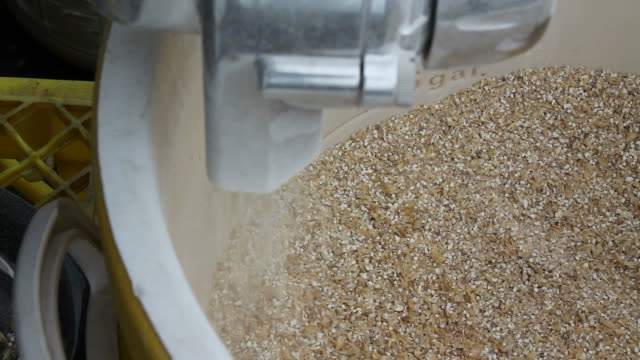Grains for Brewing Beer Video