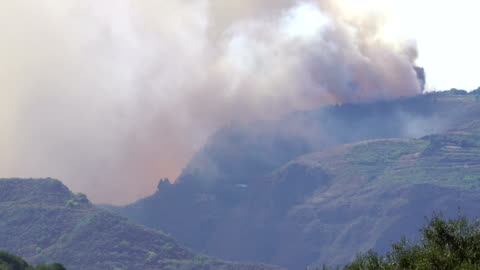 gran canary island fire - september 2017 - emergency planning stock videos & royalty-free footage
