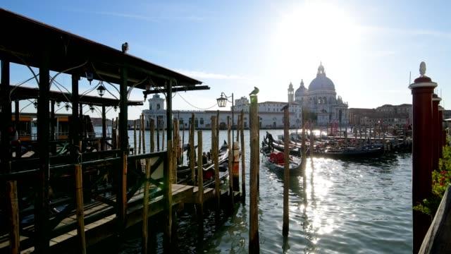 Grand Canal with Gondolas and Maria della Salute church, Venice, Venetian Lagoon, Veneto, Italy