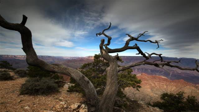 vídeos de stock, filmes e b-roll de grand canyon national park - grand canyon