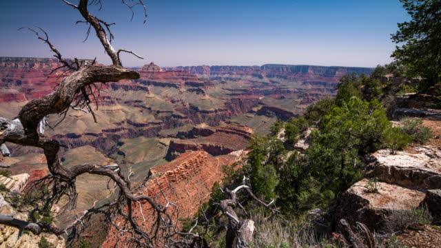 STEADYCAM: Grand Canyon National Park