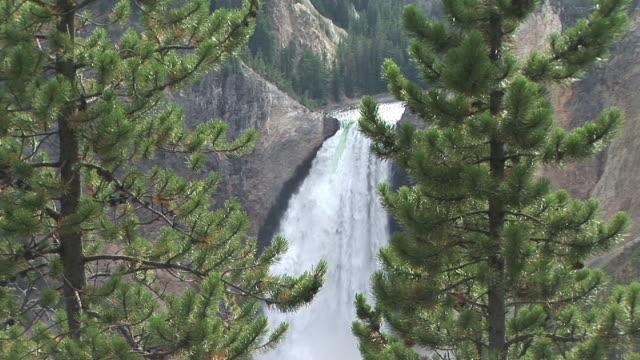 ms, zi, grand canyon of the yellowstone, lower falls, yellowstone national park, wyoming, usa, ha - lower yellowstone falls stock videos & royalty-free footage