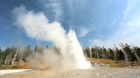 """grand geyser, yellowstone"" - yellowstone national park stock videos & royalty-free footage"