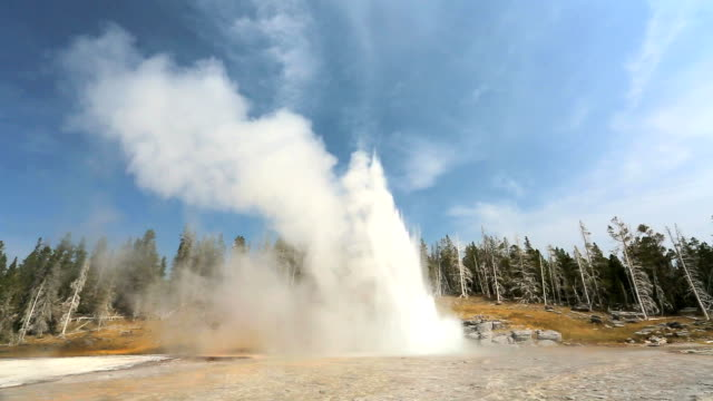 """grand geyser, yellowstone"" - geyser stock videos and b-roll footage"