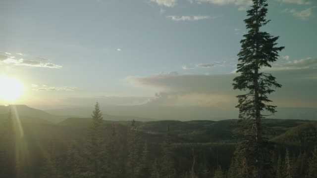 grand mesa national forest late evening sunset forest fire smoke on horizon 4k video series - coniferous stock videos & royalty-free footage