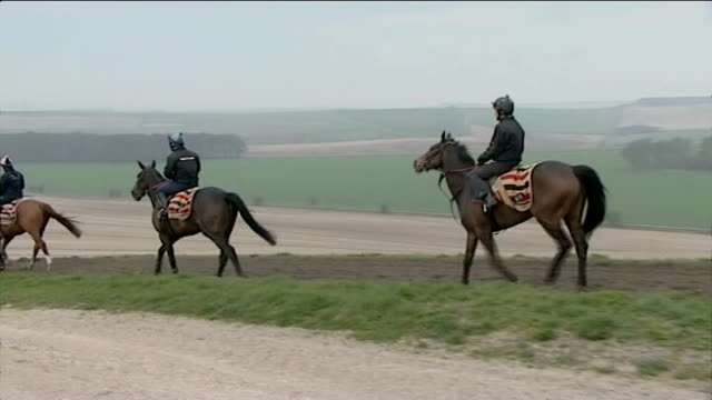 grand national meeting waleycohen rides winner ahead of big race ride berkshire seven barrows long run and other horses being ridden on the gallops - steeplechase stock videos and b-roll footage