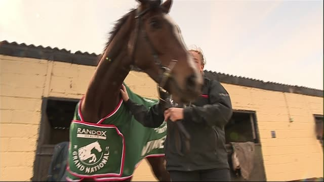 grand national one for arthur returns home to scotland horse racing grand national one for arthur returns home to scotland scotland perth and kinross... - steeplechase stock videos and b-roll footage