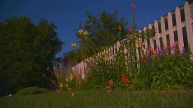 vidéos et rushes de grand rapids, michiganflower garden along fence, low angle - clôture jardin