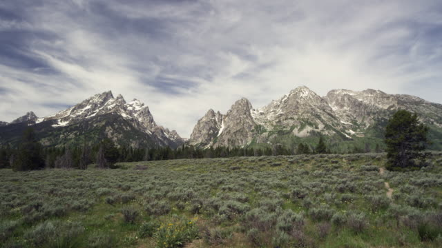 grand teton mountains with clouds and vegetation real time - grand teton stock-videos und b-roll-filmmaterial