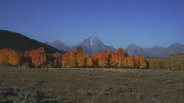 stockvideo's en b-roll-footage met grand teton overlooks a plain bordered by autumn trees. - grand teton