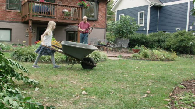 granddaughter helps grandparents in the garden - wheelbarrow stock videos and b-roll footage