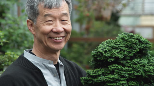 vidéos et rushes de cu td grandfather and boy holding award-winning bonsai tree in nursery / seattle, washington, usa - 65 69 ans