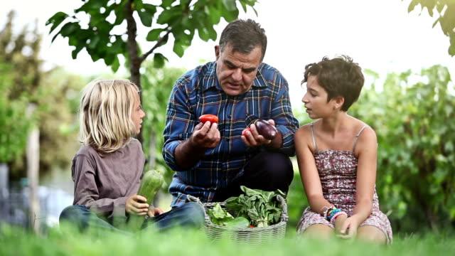 vídeos y material grabado en eventos de stock de abuelo y niños: explicar los productos agrícolas - nieta