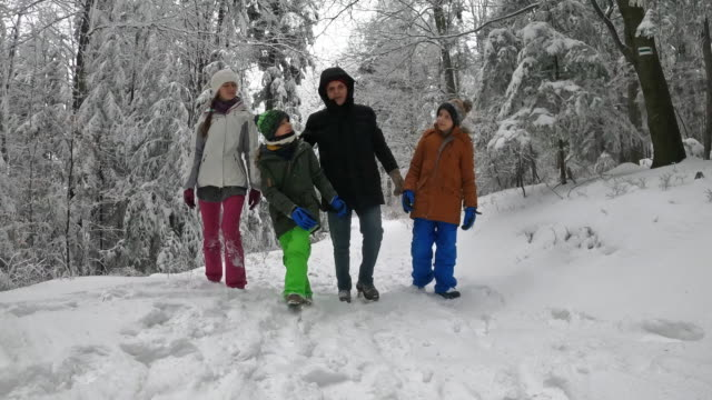 grandfather and grandchildren enjoying walking in beautiful winter forest - imgorthand stock videos & royalty-free footage