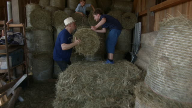 Grandfather and grandchildren stacking bales of hay