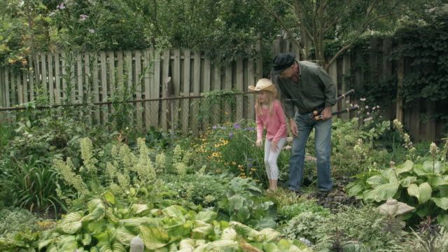grandfather and granddaughter walk in the garden - giardinaggio video stock e b–roll
