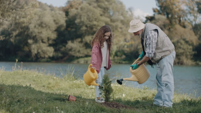 grandfather and granddaughter watering a plant - planting stock videos & royalty-free footage
