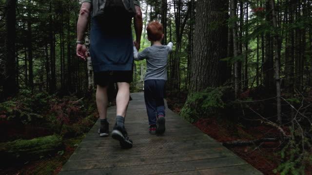 vidéos et rushes de randonnée de grand-père et de petit-fils dans la forêt en été - province du québec