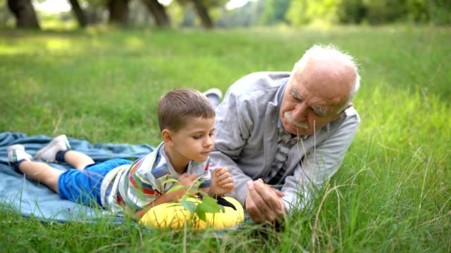 grandfather and grandson, picnic time - grandson stock videos & royalty-free footage