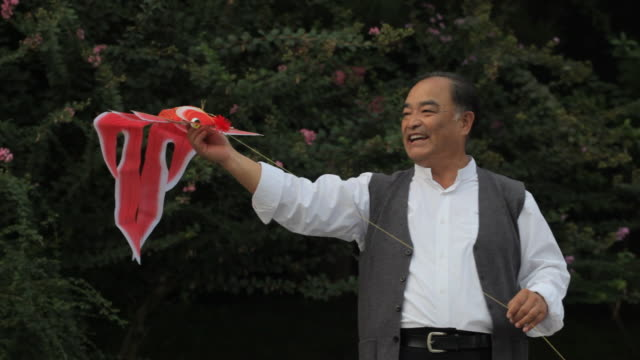 MS PAN Grandfather and grandson playing with kite in park / China
