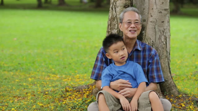 ms grandfather and grandson sitting and hugging against a tree - tree hugging stock videos & royalty-free footage