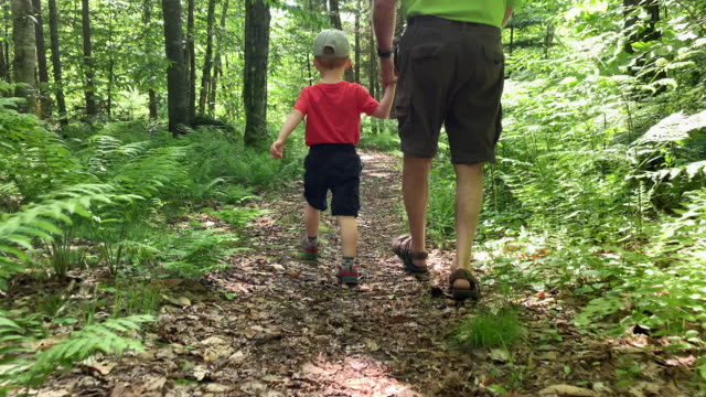 grandfather and son exploring forest on hiking trail - toddler stock videos & royalty-free footage