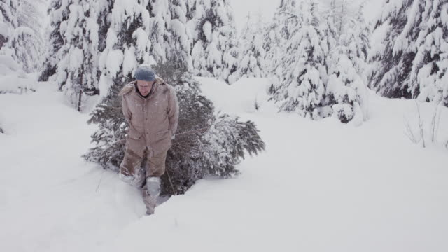 grandfather dragging christmas tree in snow in usa. - weihnachtsbaum stock-videos und b-roll-filmmaterial