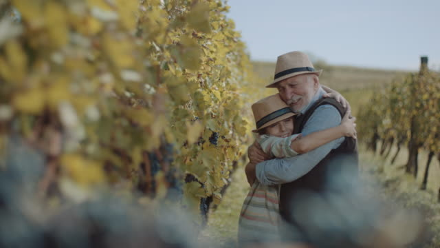 vídeos de stock e filmes b-roll de grandfather embracing grandson in vineyard - abraçar