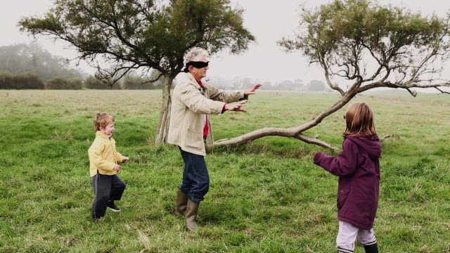 ws grandfather playing 'blind man's buff' with children (4-7) / corsept, loire-atlantique, france - famille stock videos and b-roll footage