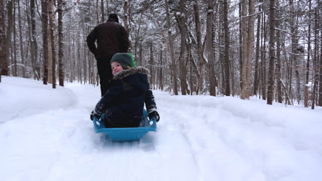 grandfather pulling grandson on sled in winter - pulling stock videos & royalty-free footage