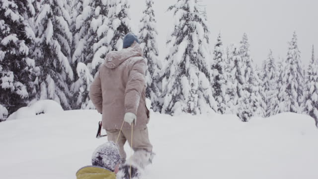 grandfather pulling grandson on sled looking for christmas tree in snow in usa. - weihnachtsbaum stock-videos und b-roll-filmmaterial