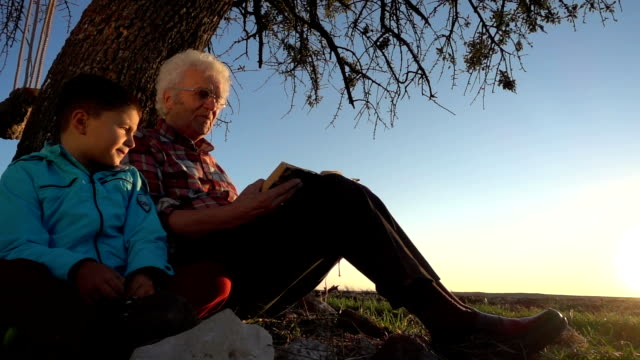 grandfather reading story book with happy grandson - fairytale stock videos and b-roll footage