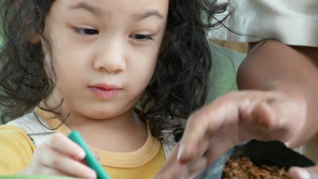 vídeos y material grabado en eventos de stock de abuelo enseñando al niño sobre biología, planta en crecimiento en casa, concepto de educación en casa - genderblend