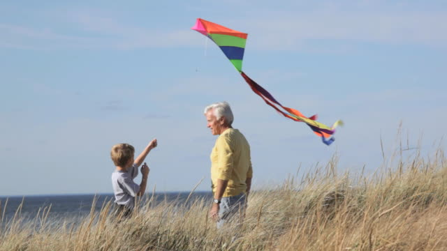 ws tu grandfather teaching grandson to fly kite on beach dunes / eastville, virginia, usa - kite toy stock videos and b-roll footage