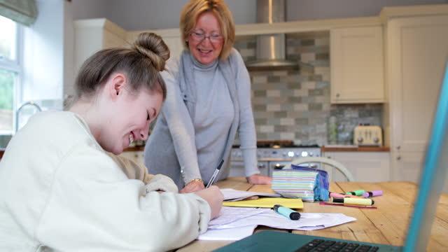 grandma helping with homework - guidance stock videos & royalty-free footage