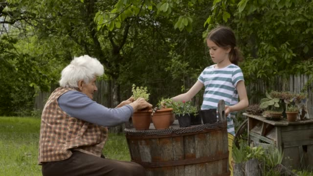 grandmother and child gardening outdoors in spring. - teaching stock videos & royalty-free footage