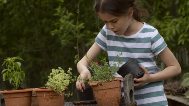 春に屋外で祖母と子供のガーデニング。 - 園芸学点の映像素材/bロール