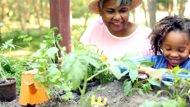 grandmother and children gardening outdoors in spring. - giardinaggio video stock e b–roll