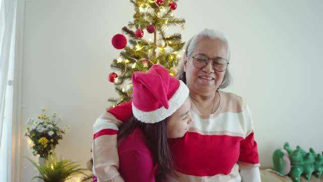 grandmother and granddaughter embracing at home - pinaceae stock videos & royalty-free footage
