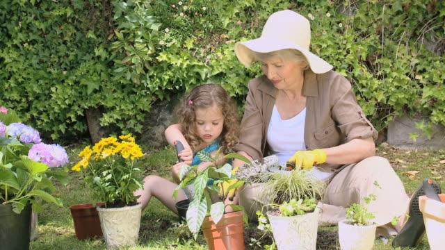 ws grandmother and granddaughter gardening together in garden / cape town, western cape, south africa - trädgårdshandske bildbanksvideor och videomaterial från bakom kulisserna