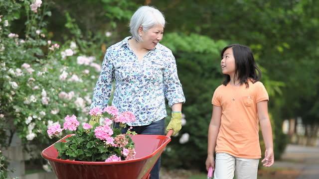 grandmother and granddaughter in garden - アクティブシニア点の映像素材/bロール